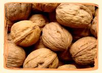 Noix - Vergers des Moncels - Producteur de fruits à Lagney