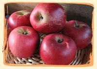 Pomme Akane - Vergers des Moncels - Producteur de fruits à Lagney