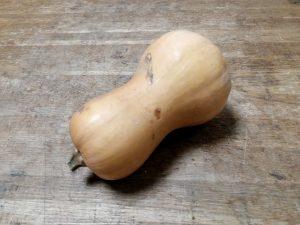 Buternut - Vergers des Moncels - Producteur de fruits à Lagney