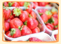 Fraise Matis - Vergers des Moncels - Producteur de fruits à Lagney