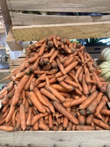 Carottes - Vergers des Moncels - Producteur de fruits à Lagney