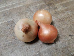 Oignon jaune - Vergers des Moncels - Producteur de fruits à Lagney