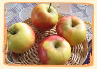 Pomme Elstar - Vergers des Moncels - Producteur de fruits à Lagney