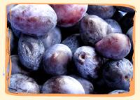 Quetsches - Vergers des Moncels - Producteur de fruits à Lagney