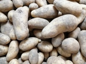 Pomme de terre Elodie - Vergers des Moncels - Producteur de fruits à Lagney