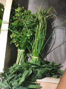Persil - Vergers des Moncels - Producteur de fruits à Lagney