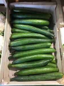 Concombres - Vergers des Moncels - Producteur de fruits à Lagney