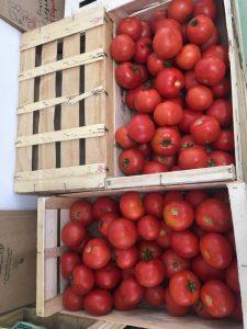 Tomates Rondes - Vergers des Moncels - Producteur de fruits à Lagney