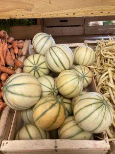 Melons - Vergers des Moncels - Producteur de fruits à Lagney